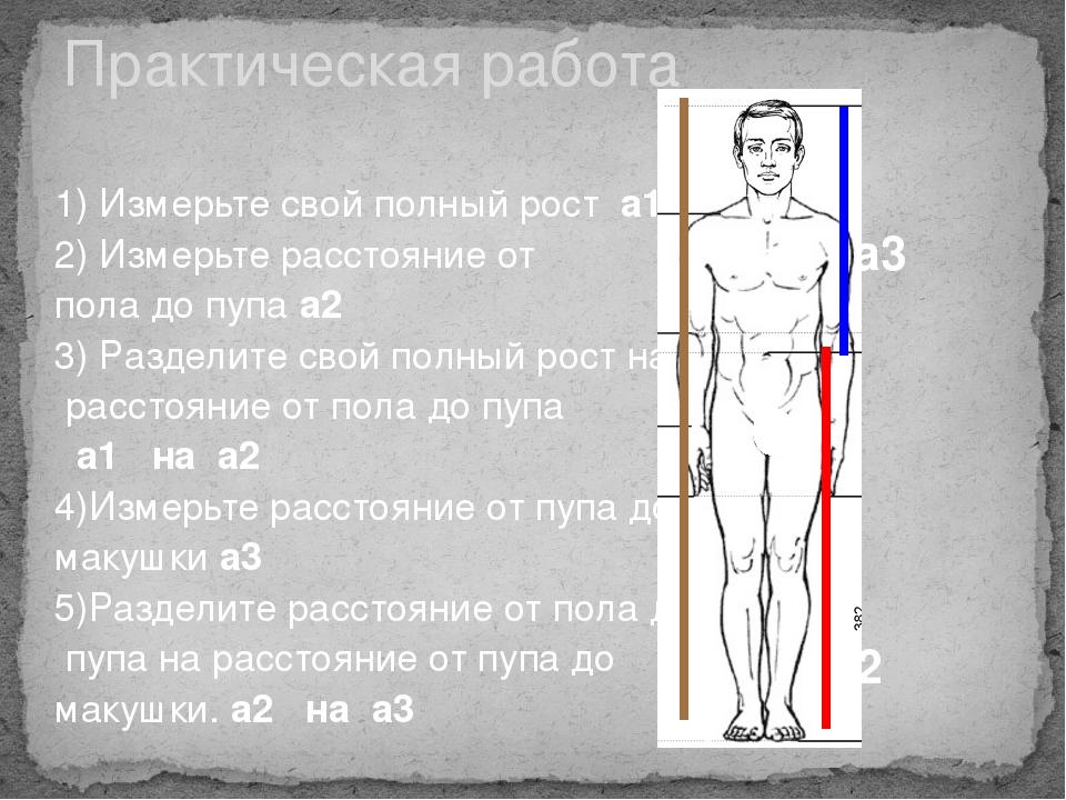 1) Измерьте свой полный рост а1 2) Измерьте расстояние от пола до пупа а2 3)...