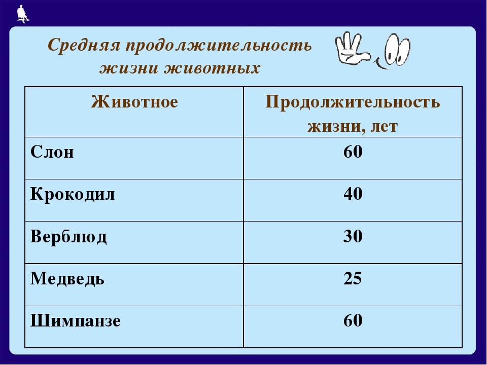 Средняя продолжительность жизни животных Москва, 2006 г.
