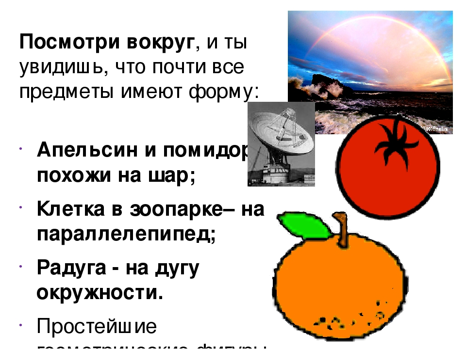 Посмотри вокруг, и ты увидишь, что почти все предметы имеют форму: Апельсин и...