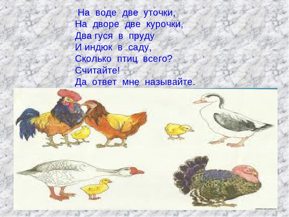 На воде две уточки, На дворе две курочки, Два гуся в пруду И индюк в саду, Ск...
