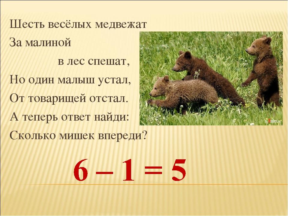 Шесть весёлых медвежат За малиной в лес спешат, Но один малыш устал, От товар...