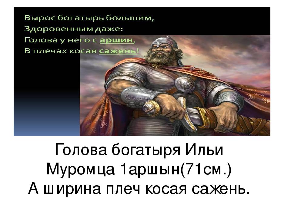 Голова богатыря Ильи Муромца 1аршын(71см.) А ширина плеч косая сажень.