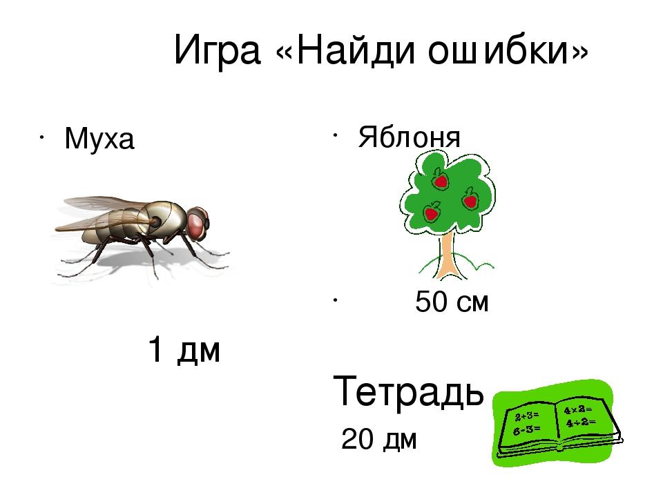 Игра «Найди ошибки» Муха 1 дм Яблоня 50 см Тетрадь 20 дм