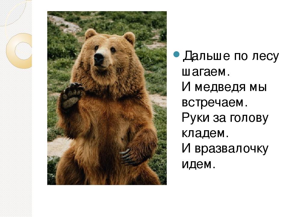 Дальше по лесу шагаем. И медведя мы встречаем. Руки за голову кладем. И вразв...