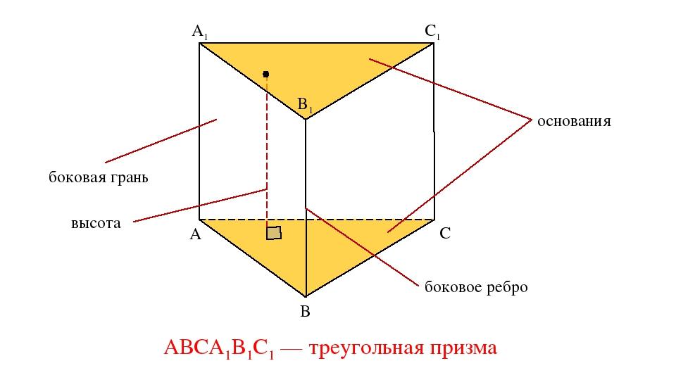 A1 B1 C1 A B C основания боковая грань боковое ребро АВСA1B1C1 — треугольная...