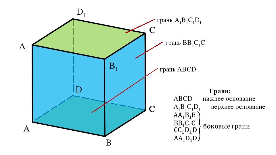 A D C B A1 D1 C1 B1 грань A1B1C1D1 грань BB1C1C грань ABCD ABCD — нижнее осно...