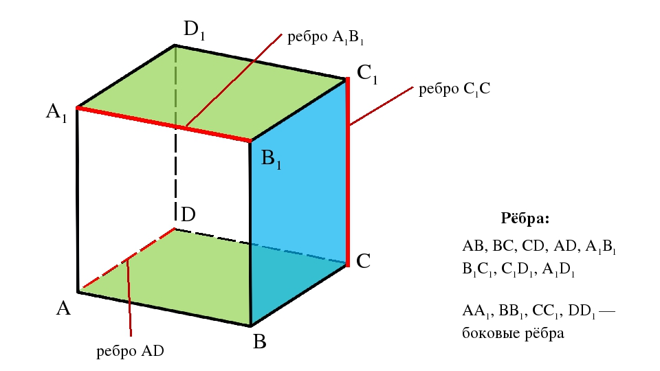 A D C B A1 D1 C1 B1 ребро A1B1 ребро C1C ребро AD АВ, ВС, CD, AD, А1В1 В1С1,...