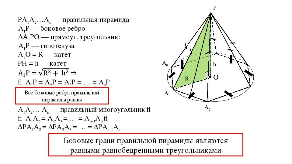 PA1A2…An — правильная пирамида А1Р — боковое ребро ΔА1РО — прямоуг. треугольн...
