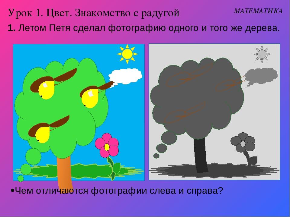 Урок 1. Цвет. Знакомство с радугой Чем отличаются фотографии слева и справа?...