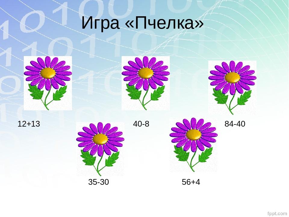 Игра «Пчелка» 12+13 40-8 84-40 35-30 56+4