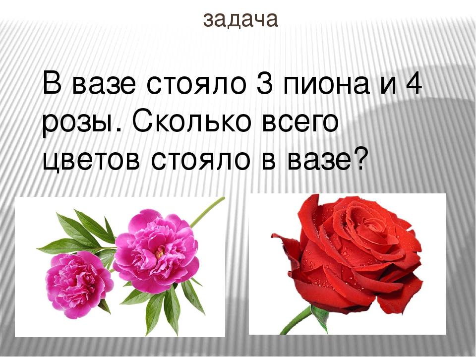 задача В вазе стояло 3 пиона и 4 розы. Сколько всего цветов стояло в вазе?
