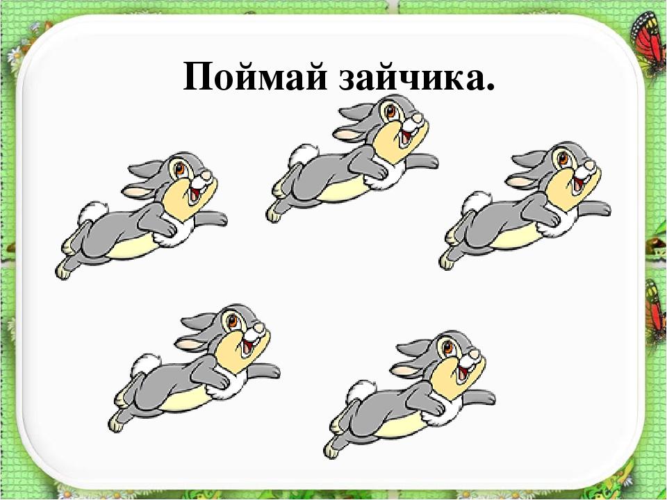 Поймай зайчика.