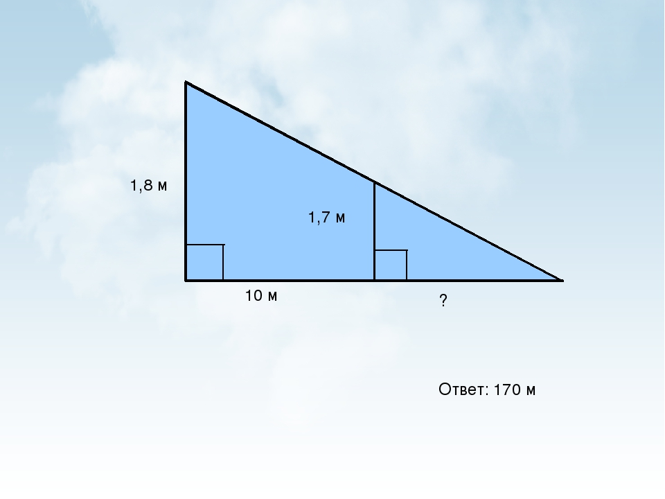 Ответ: 170 м 1,8 м 1,7 м 10 м ?