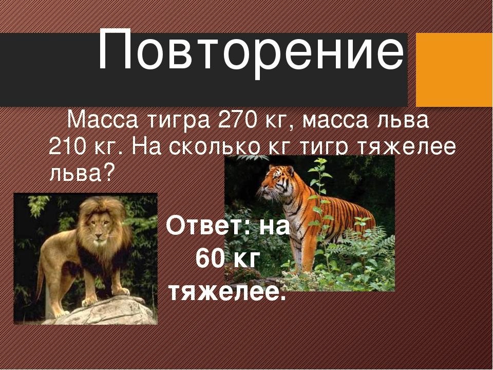 Повторение Масса тигра 270 кг, масса льва 210 кг. На сколько кг тигр тяжелее...