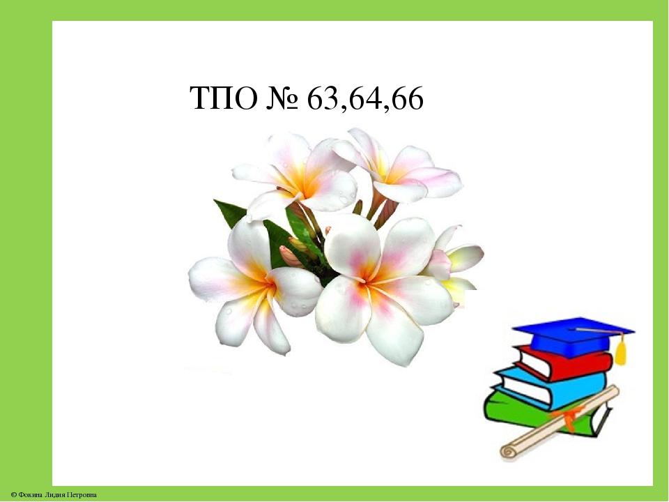 ТПО № 63,64,66 © Фокина Лидия Петровна