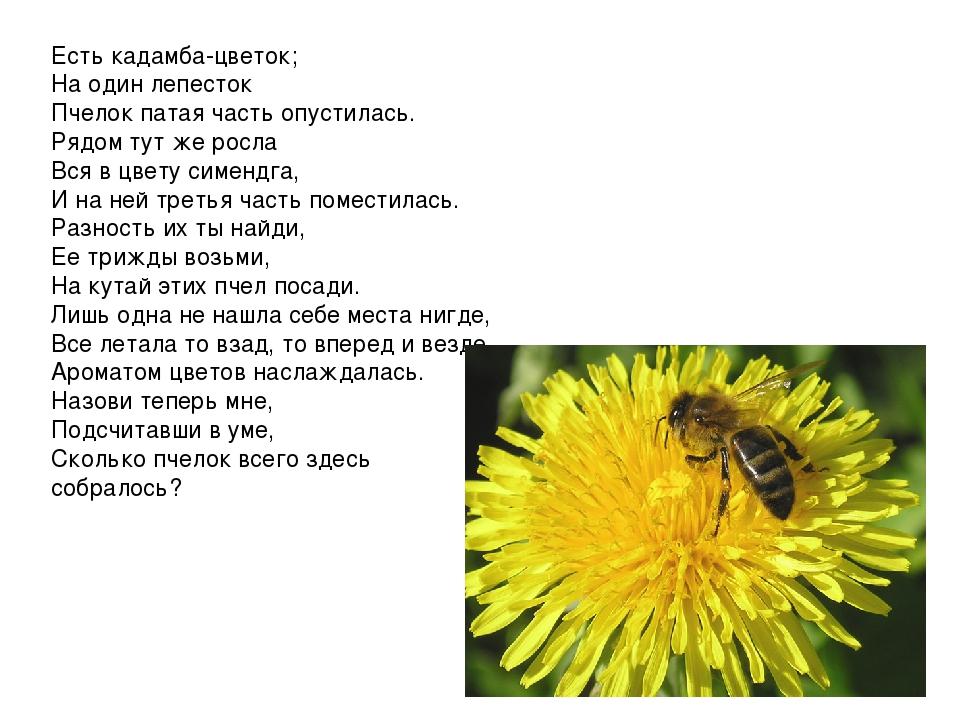 Есть кадамба-цветок; На один лепесток Пчелок патая часть опустилась. Рядом...