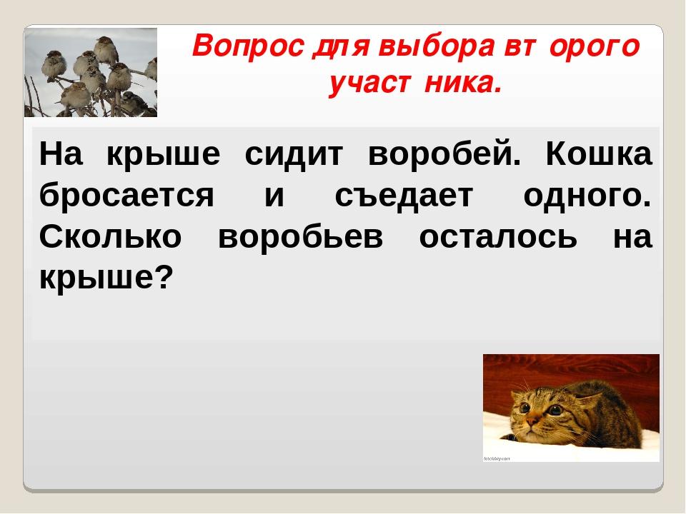 Вопрос для выбора второго участника. На крыше сидит воробей. Кошка бросается...