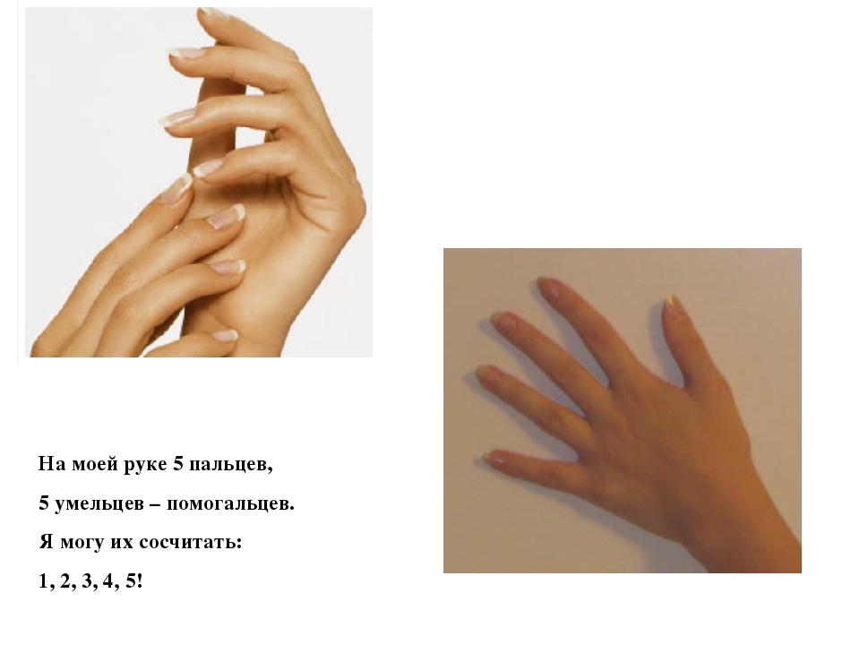 На моей руке 5 пальцев, 5 умельцев – помогальцев. Я могу их сосчитать: 1, 2,...