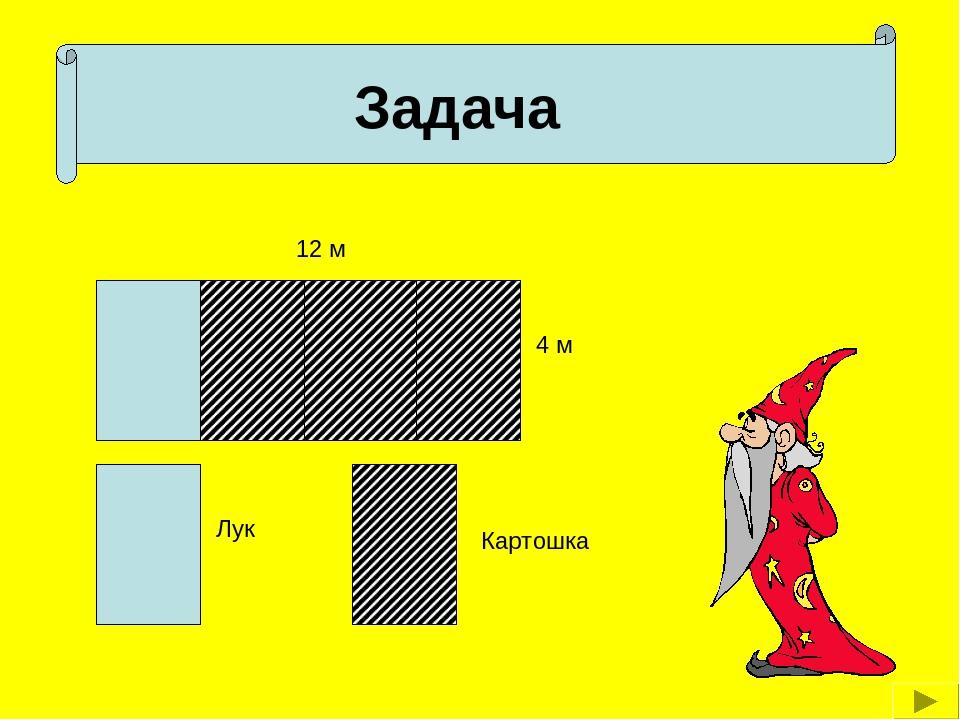 12 м 4 м Задача Лук Картошка