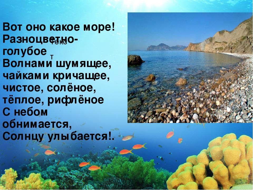 Текст Вот оно какое море! Разноцветно-голубое Волнами шумящее, чайками кричащ...