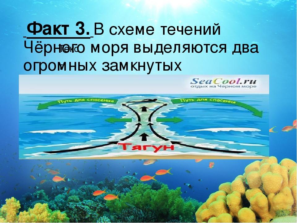 Текст Факт 3.Всхеме течений Чёрного моря выделяются два огромных замкнутых...