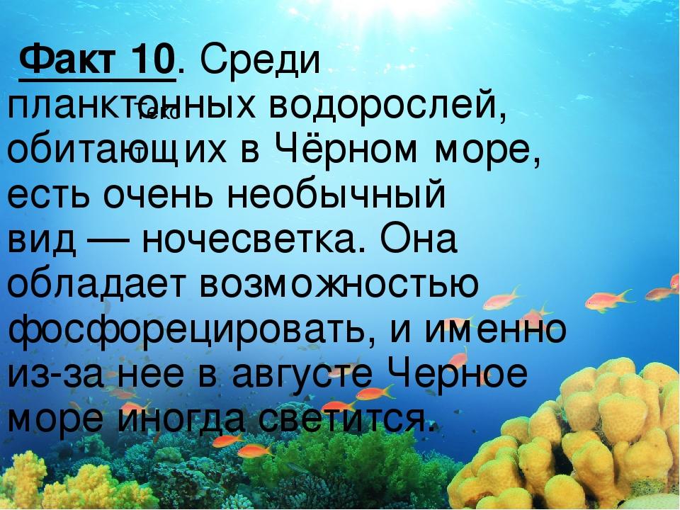Текст Факт 10. Среди планктонных водорослей, обитающих вЧёрном море, есть оч...