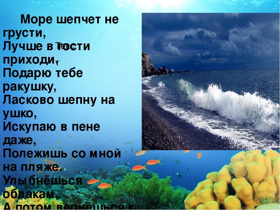 Текст Море шепчет не грусти, Лучше в гости приходи. Подарю тебе ракушку, Ласк...