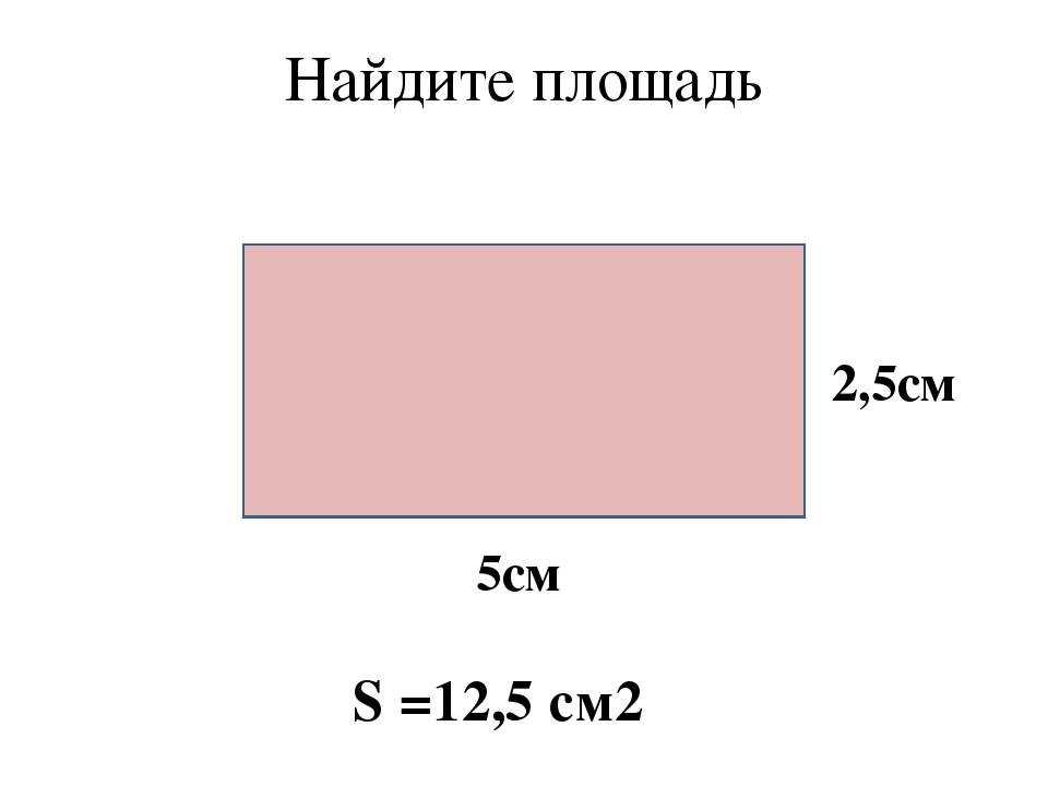 Найдите площадь 5см 2,5см S =12,5 cм2