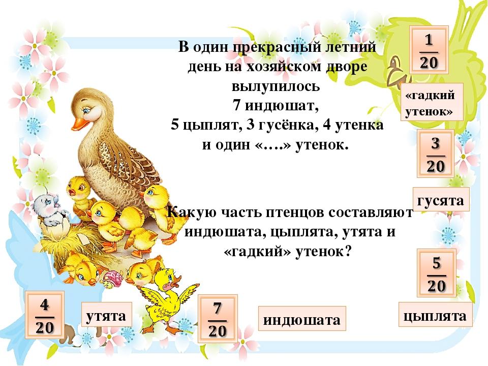 В один прекрасный летний день на хозяйском дворе вылупилось 7 индюшат, 5 цыпл...