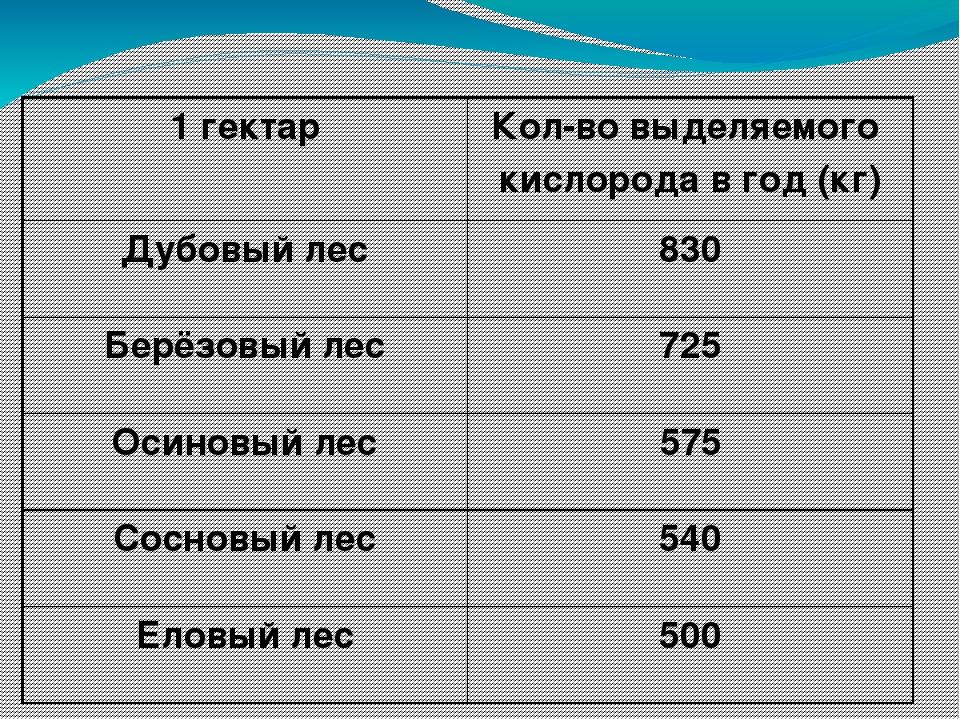 1 гектар Кол-во выделяемого кислорода в год (кг) Дубовый лес 830 Берёзовый ле...