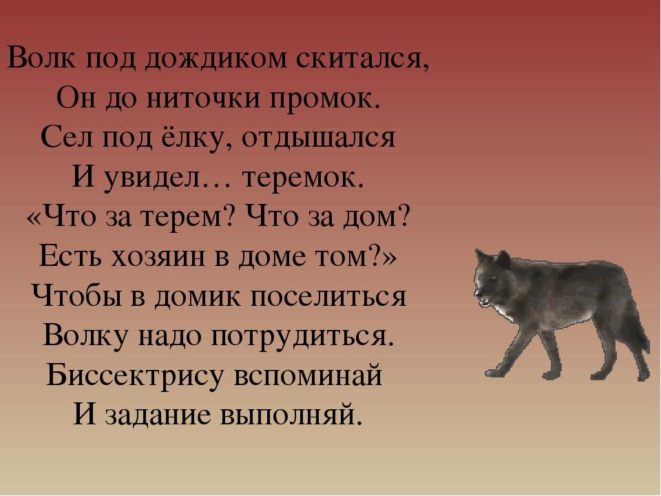 Волк под дождиком скитался, Он до ниточки промок. Сел под ёлку, отдышался И у...