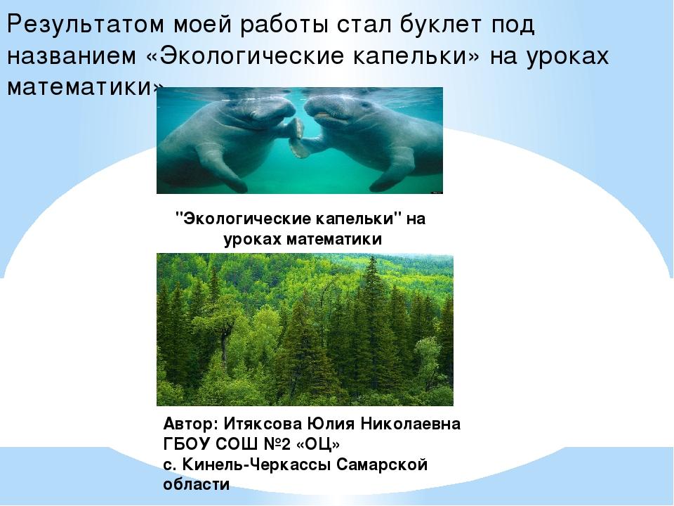 Результатом моей работы стал буклет под названием «Экологические капельки» на...
