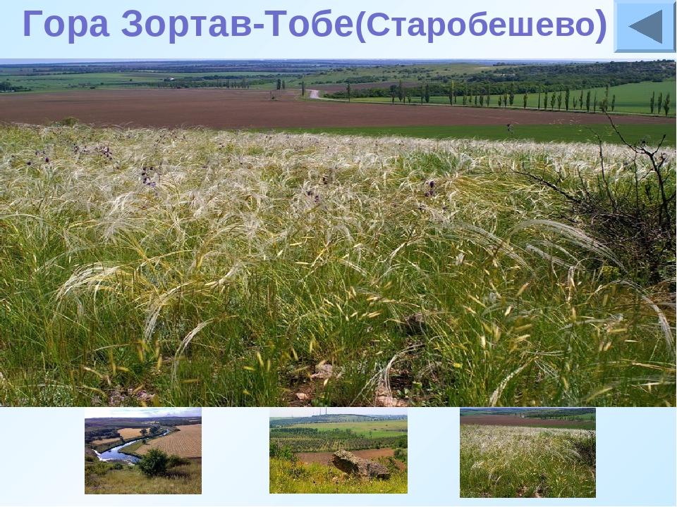 Гора Зортав-Тобе(Старобешево) Южная июго-восточная окраина Старобешево огран...