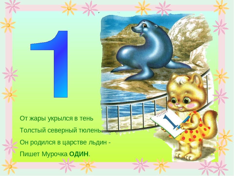 От жары укрылся в тень Толстый северный тюлень. Он родился в царстве льдин -...