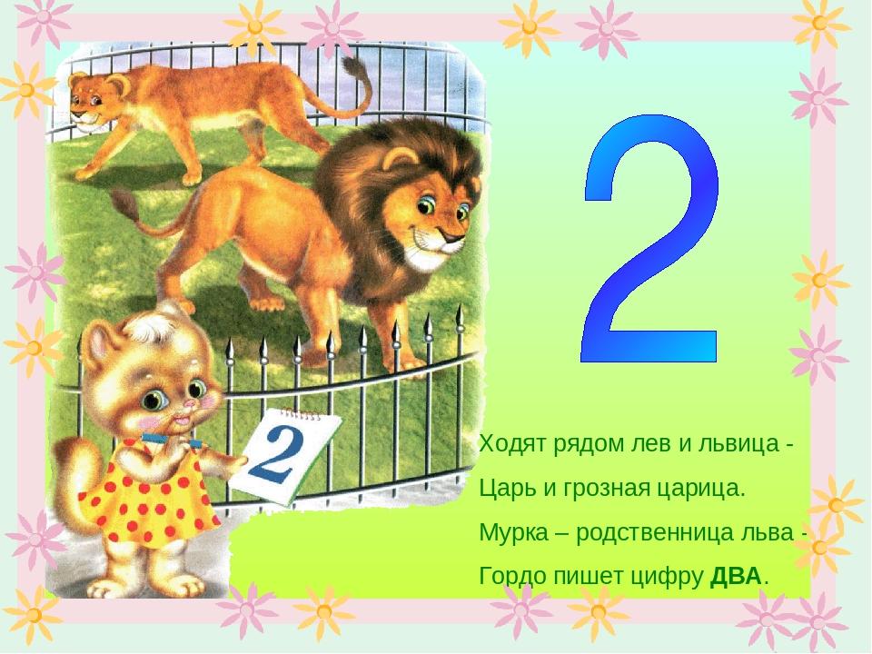 Ходят рядом лев и львица - Царь и грозная царица. Мурка – родственница льва -...