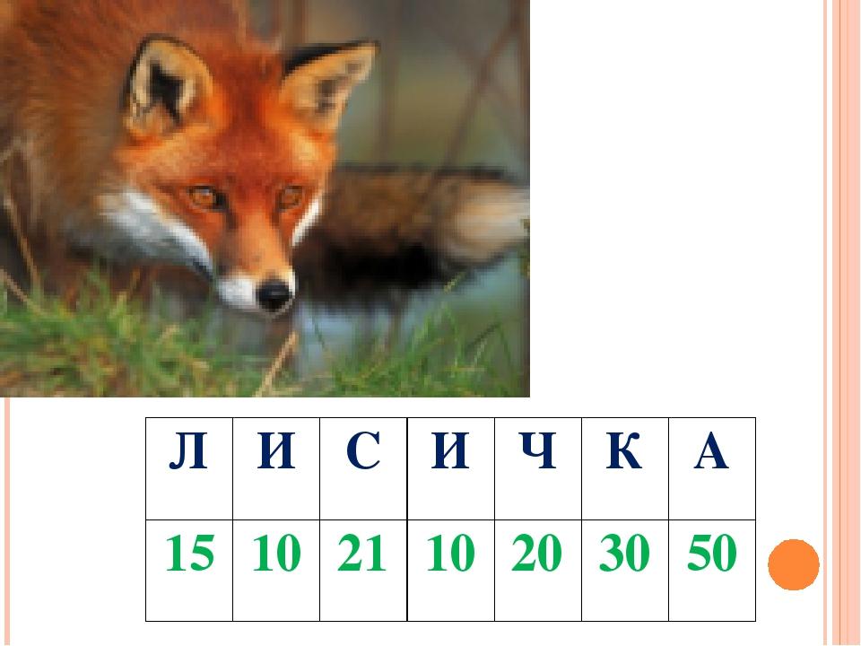 Л И С И Ч К А 15 10 21 10 20 30 50