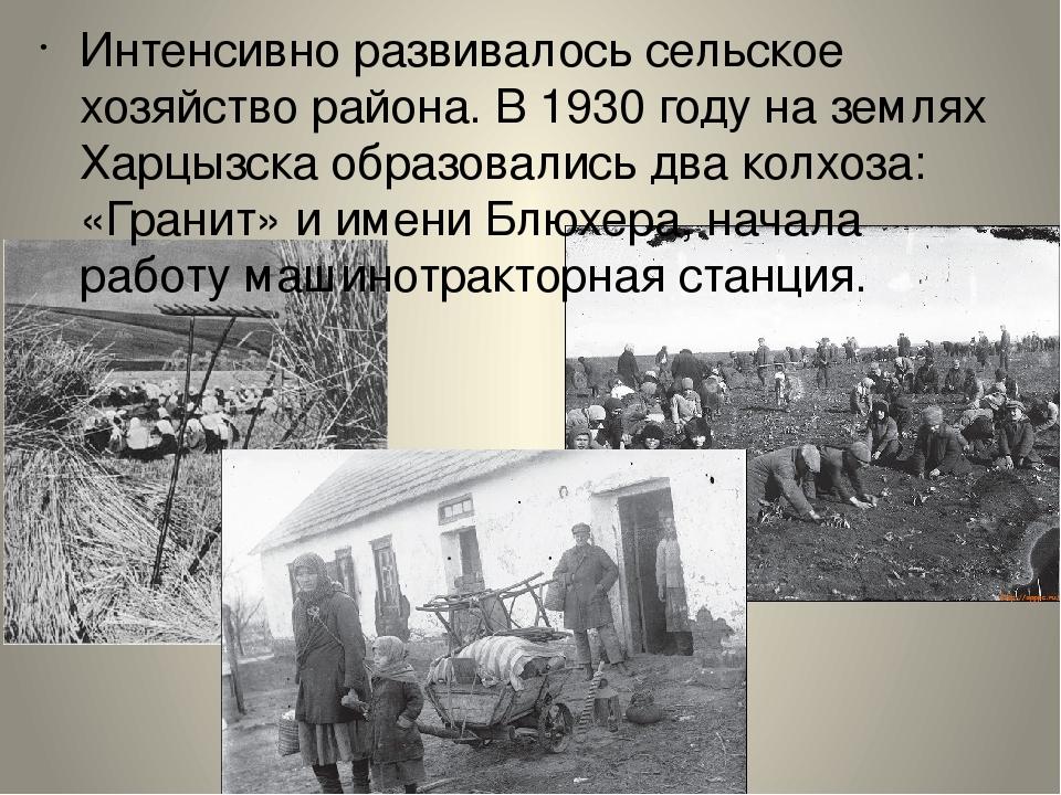 Интенсивно развивалось сельское хозяйство района. В 1930 году на землях Харцы...