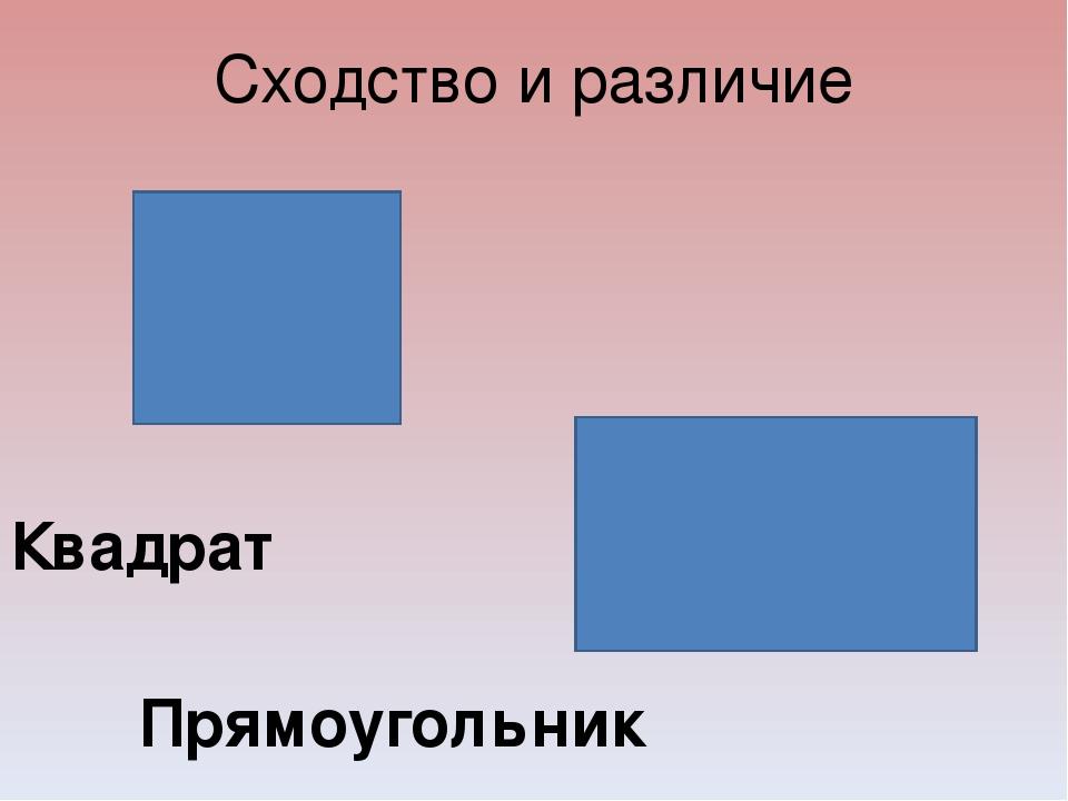 Сходство и различие Квадрат Прямоугольник