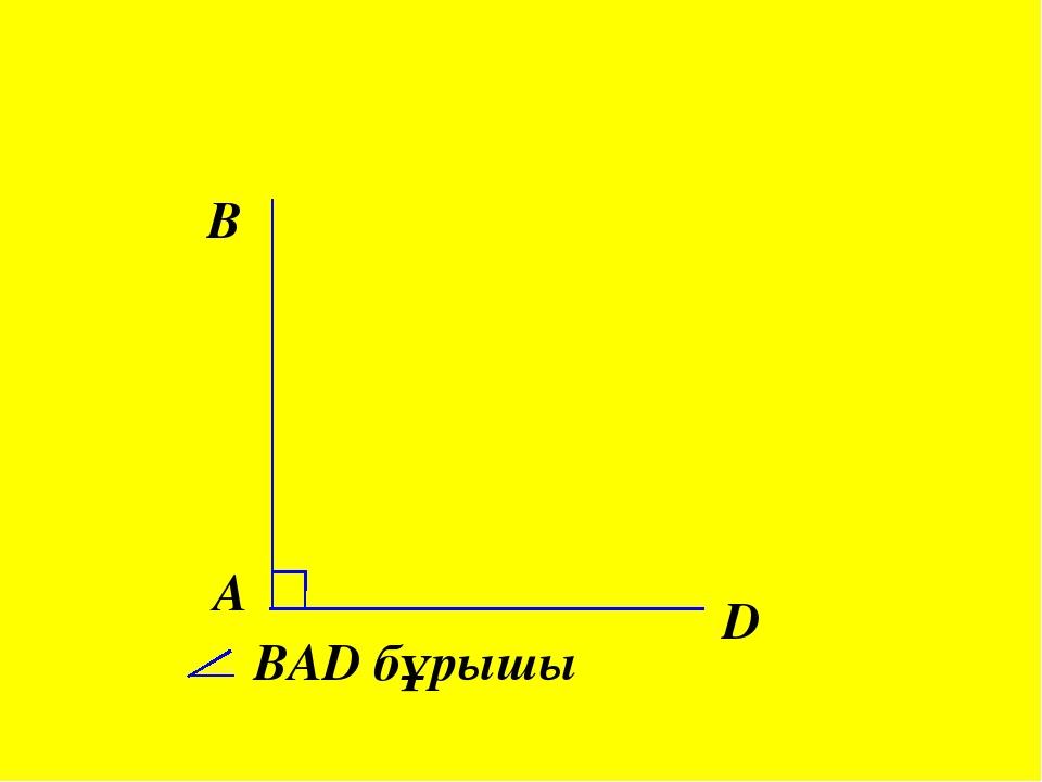A B D ВAD бұрышы