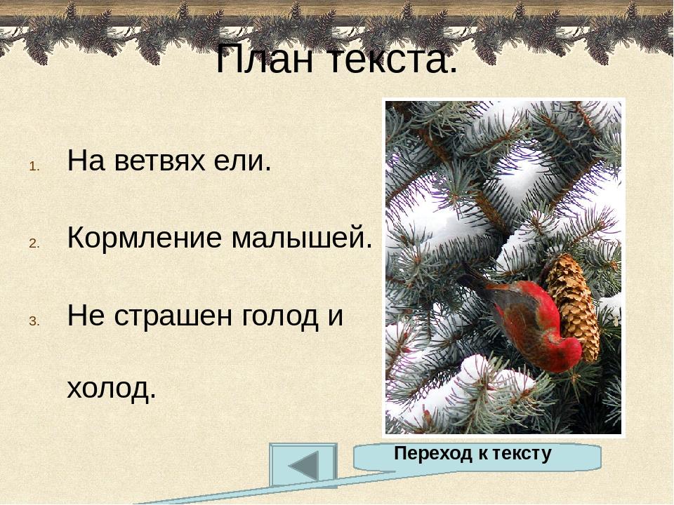 Автор презентации Кудряшова Елена Сергеевна