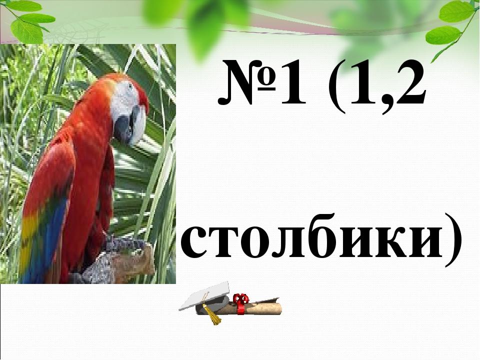 №1 (1,2 столбики)