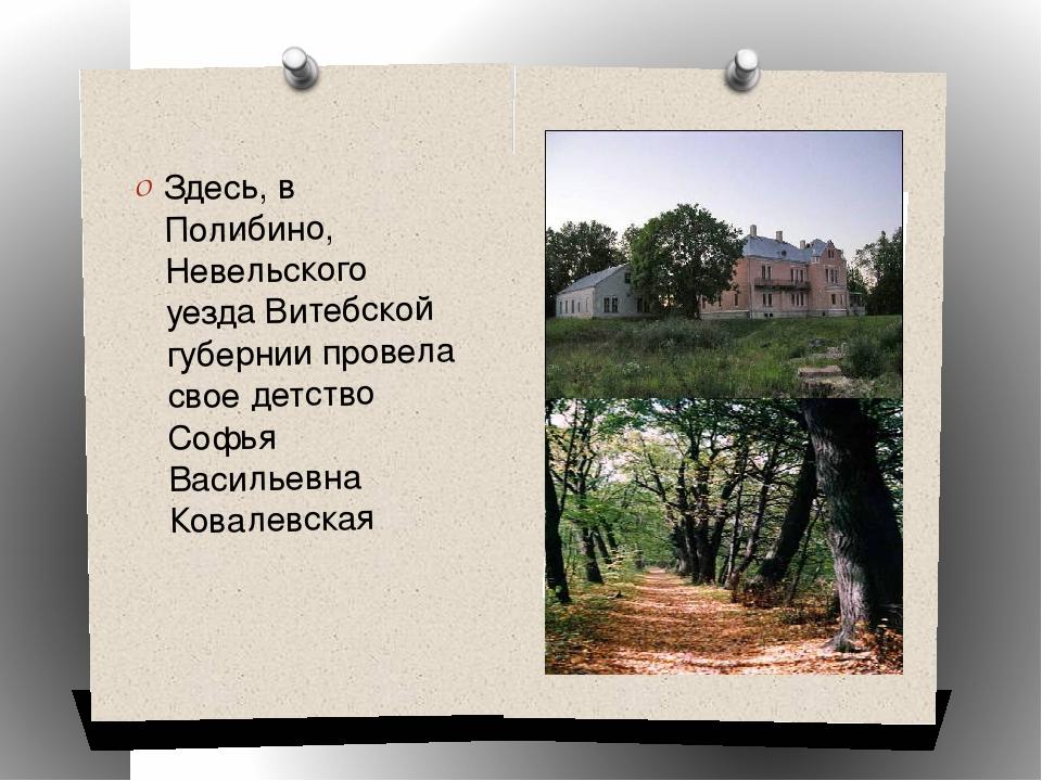 Здесь, в Полибино, Невельского уезда Витебской губернии провела свое детство...