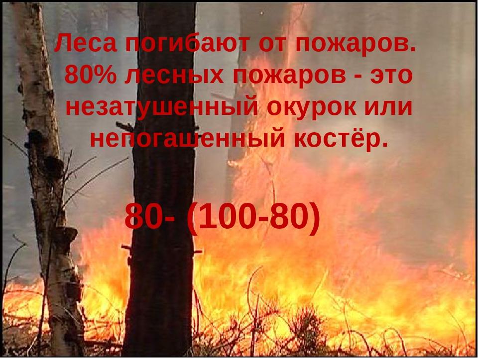 Леса погибают от пожаров. 80% лесных пожаров - это незатушенный окурок или не...