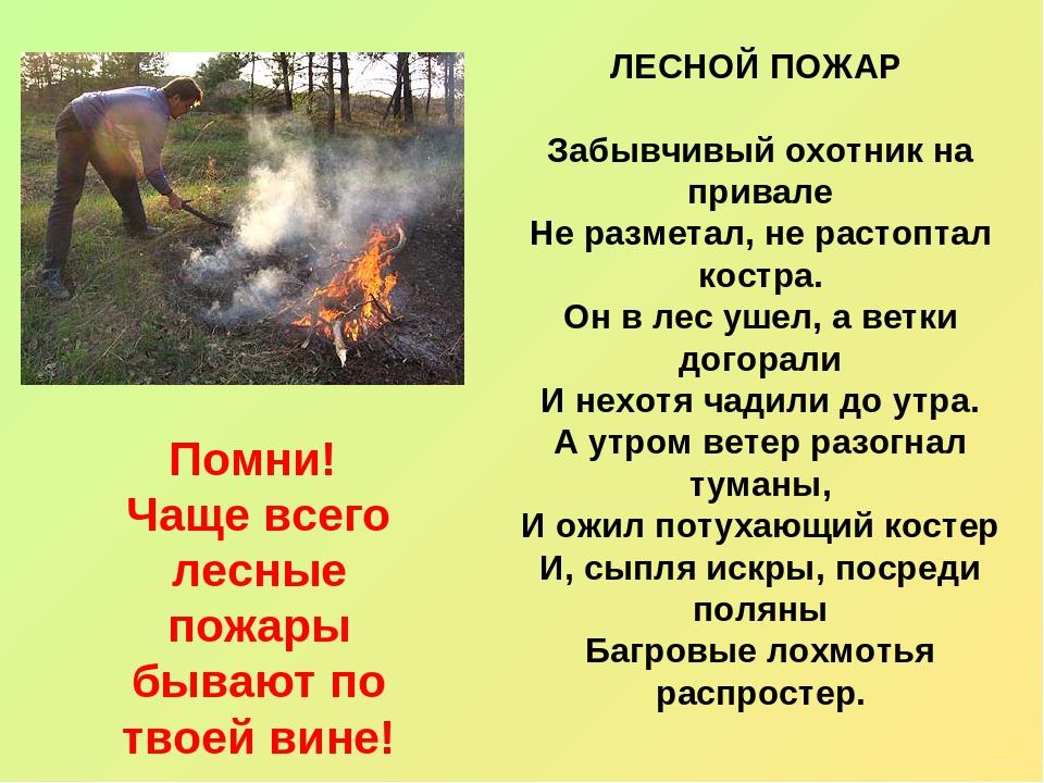 Помни! Чаще всего лесные пожары бывают по твоей вине! ЛЕСНОЙ ПОЖАР Забывчивый...