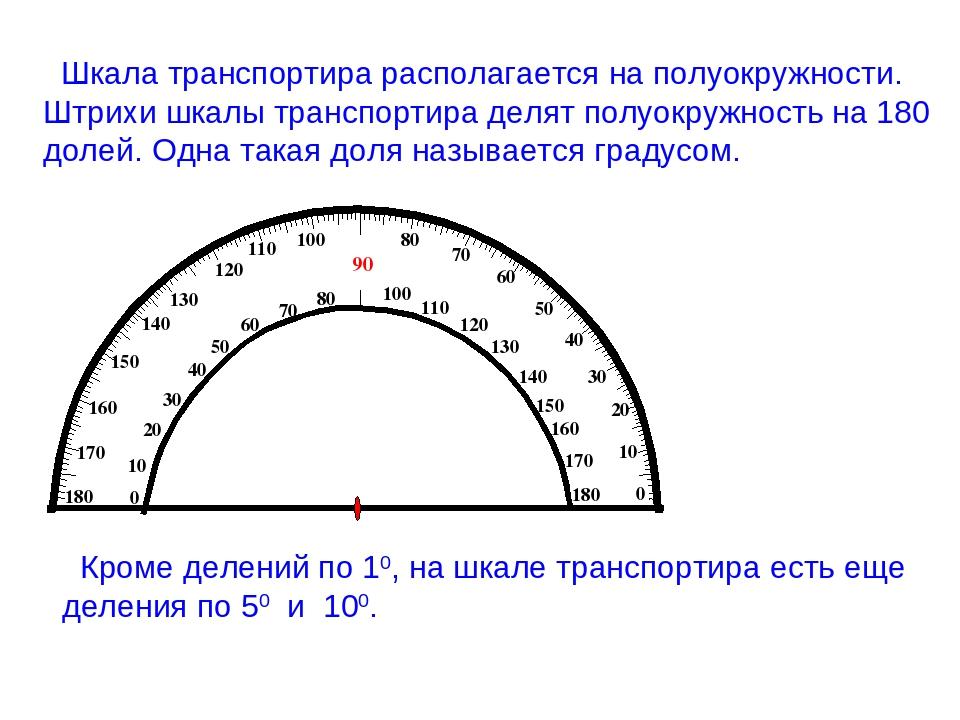 Шкала транспортира располагается на полуокружности. Штрихи шкалы транспортира...