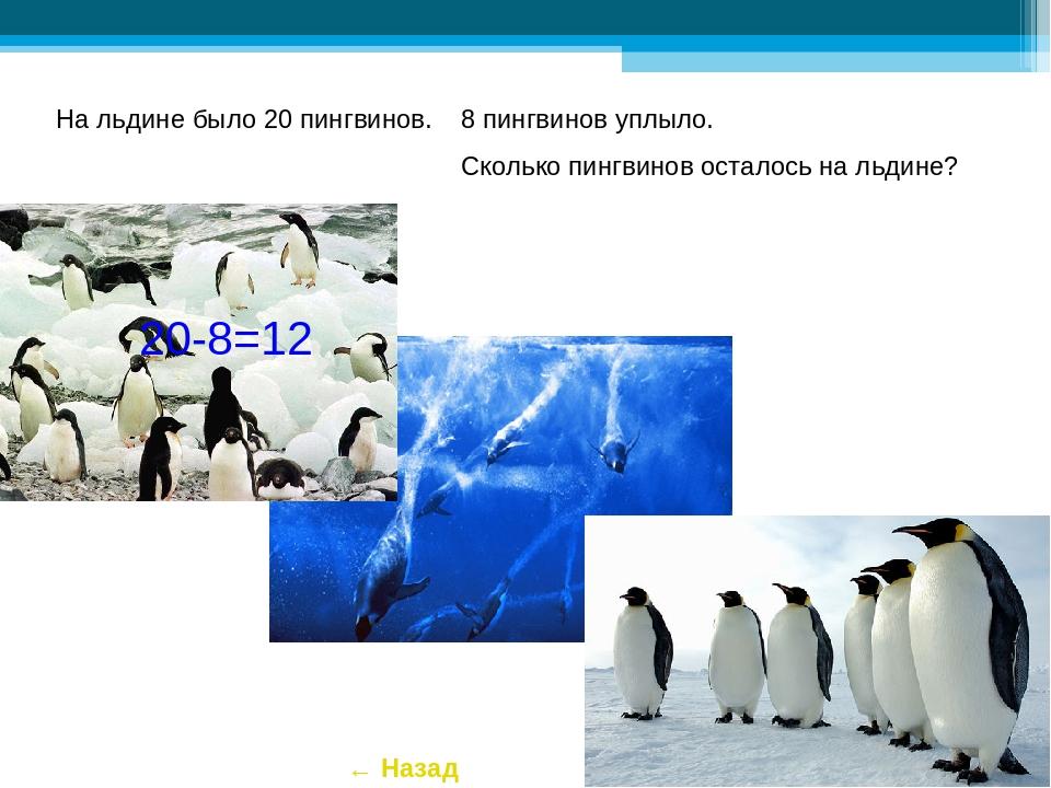 На льдине было 20 пингвинов. 8 пингвинов уплыло. Сколько пингвинов осталось н...