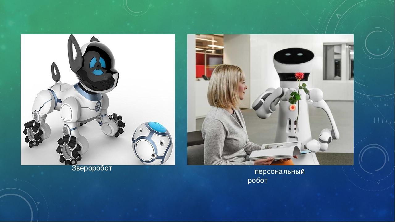 Звероробот персональный робот
