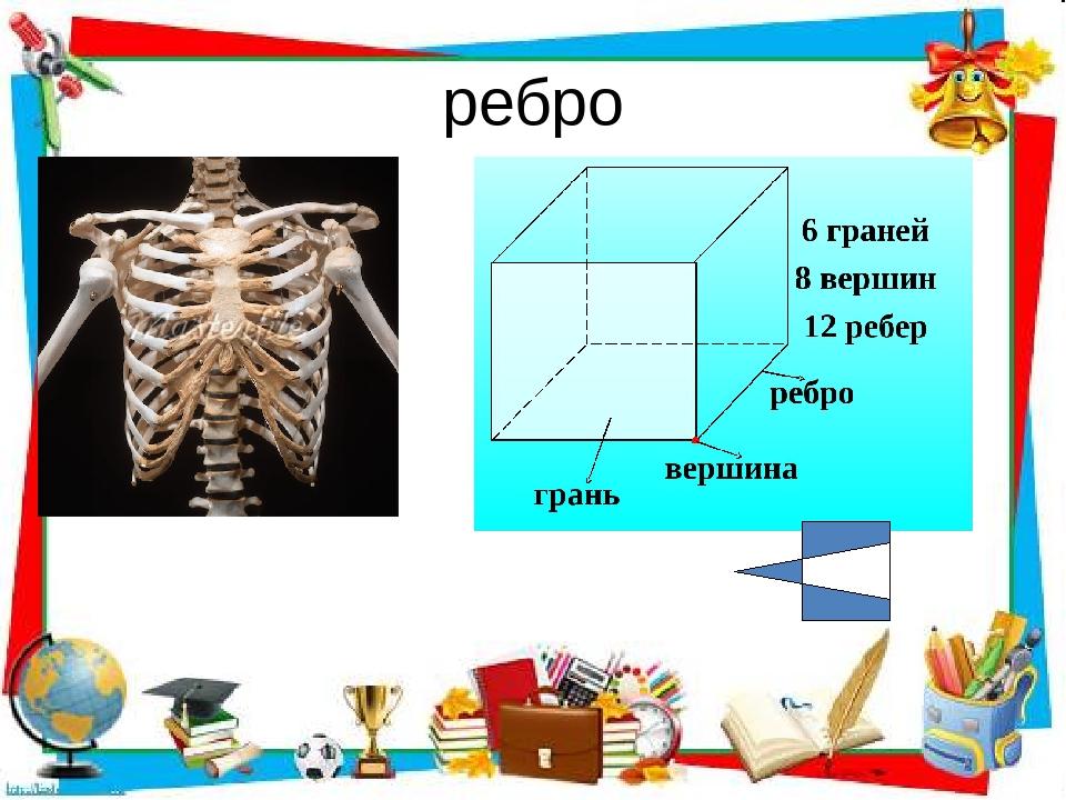 ребро