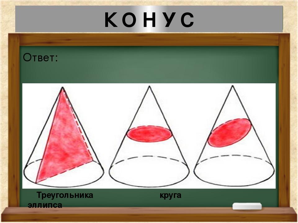 К О Н У С Ответ: Треугольника круга эллипса