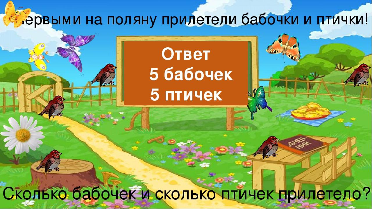 Первыми на поляну прилетели бабочки и птички! Сколько бабочек и сколько птиче...